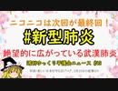 #新型肺炎 絶望的に広がっている武漢肺炎【週刊ゆっくり平護会ニュース#43】