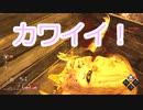 【DBD】カニバル君の黄昏 Part.28【ゆっくり実況】
