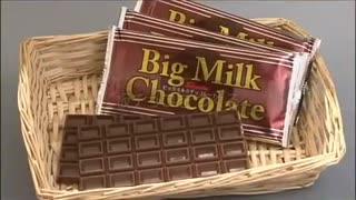 ホモと学ぶチョコレートができるまで