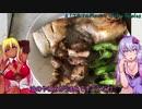 【1分弱料理祭】ブリカマの塩焼きと焼き鳥【2品目】