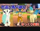 【ポケモンソード】色違い馬パ縛り【ゆっくり実況】1