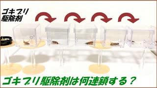 「ゴキブリ駆除剤」を食べたゴキブリ1匹から何連鎖するのか試してみたら想像できない結果になった。