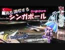 夜も満喫するシンガポール #1 朝の羽田空港