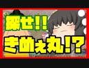 【ゆっくり実況】超絶ウザい⁉きめぇ丸を探せ!!#6日目前編【ピクミン2】