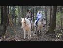 ジョジョの奇妙な冒険 コスプレで乗馬してみた