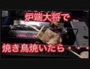 炉端大将で焼き鳥焼いてみた結果・・・As a result of trying Yakitori with General Furbata ...