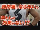 【Q&A】筋肉痛にならないと筋肉は大きくならない!?【ビーレジェンド チャンネル】