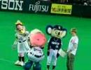 引きずられるドアラ。福岡マスコット対決!