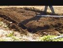 【初投稿】兼業農家の週末菜園#1