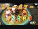 カレーパワー10000over!至極のスパイスカレーを食す スパイスカレー大陸