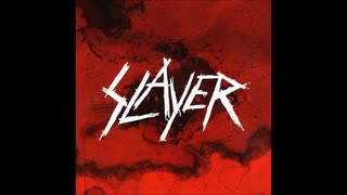 Slayer - Public Display Of Dismemberment
