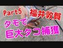 【釣り動画 Part5】3人で敦賀の巨大タコをタモで捕まえました!エギング(イカ釣り)、サビキ最中にゲット