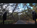【1分弱車載前夜祭】虹の松原を走るだけ