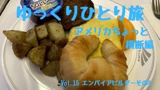 【ゆっくり】ひとり旅『アメリカちょっと横断編』 Vol.15