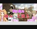【みんなのきもちデッキ】マジカル横山三国志 第2話【千佳ちゃんの三国志大戦】