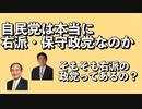 自民党は本当に右派・保守政党なのか? / Is the Liberal Democratic Party conservative?(Japanese)