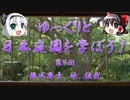 【ゆっくり解説】ゆっくりと日本庭園を学ぼう! 第9回 構成...