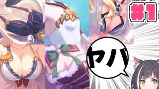 【徹底討論】プリコネキャラのバストサイ