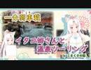 【一分弱車載】イタコ姉さんと温泉ツーリング【謎の光】