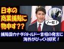 【海外の反応】 日本の商業捕鯨に 物申す 捕鯨国カナダの トルドー首相の発言に 海外が仰天!