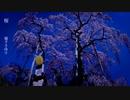 【鏡音リン】 桜 【堀下さゆりカバー】