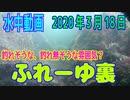 Underwater Videos (March 18, 2020) in Fureyuura