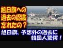 【海外の反応】 韓国人は 旭日旗に対する 過去の 認識を 忘れてしまった!?