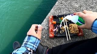 海で柏弁当食べる「スコール最高!」