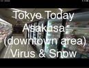 This Sunday, March 29th in Tokyo, around 10-00 - Asakusa, downtown Virus & Snow