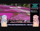 【1分弱登山祭】琴葉姉妹の羊山公園 見晴らしの丘 聖地巡礼_10分