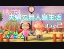 第341位:【あつ森】夫婦で無人島生活day2