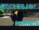 おそらく中級者のフォートナイト実況プレイPart238【Switch版...