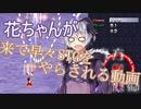 花ちゃんが来て早々STGをやらされる動画