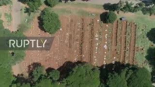ブラジル サンパウロ墓地に掘られた何百も