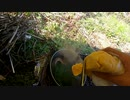 ソロキャンプで初心者が釣りをしてみたけど全く釣れなかったので、勘で刀削麺を作ってみたらアメリカンドックが出来た動画②