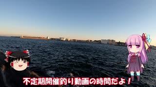 琴葉姉妹と行く釣行記録(海釣り編part7)