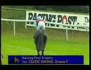 1994年 第34回レーシングポストトロフィー(Racing Post Trophy)(G1) セルティックスウィング(Celtic Swing)