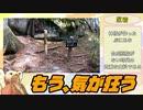 【東北きりたん】十文字峠~甲武信ヶ岳~雁坂峠RTA【日本百名山】