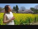 miwa/あなたがここにいて抱きしめることができるなら (Uru Ver.) Covered by Mayumin feat.Yukino Yoshida