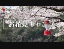 ぼっちかふぇ その184 ~お花見キャンプ~ ソロキャンプ