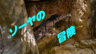 【Skyrim】ソーヤの冒険 竜の血脈編1【ゆ