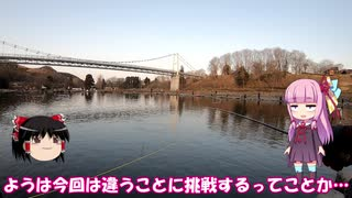 琴葉姉妹と行く釣行記録(釣り堀編part7)
