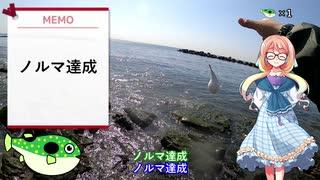 そらさんと釣りの思い出 番外編~コメン