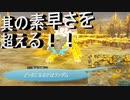 【ポケダンDX】 第二十五幕 もう一つの限界突破を得て雷の伝説に挑む!!2