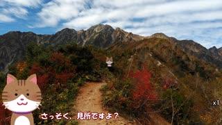 【1分弱登山祭】五竜岳2814m 3:06