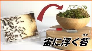 宙に浮かぶ「苔」の上でアリを飼育しようとしたら・・・。