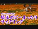 【ミニベロ】埼玉ポピーまったりサイクリング【ポタリング】