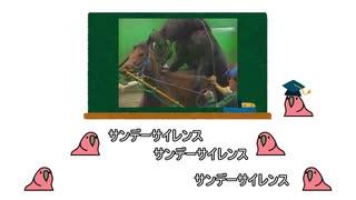 【種牡馬大戦】sire parrot