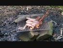 【野外飯】コロナ自粛中なので、家の庭で1人焚き火焼き肉肉を焼いて食う!ソレダケ!!!