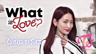 【TWICEカバーダンス】What is Love (Cove